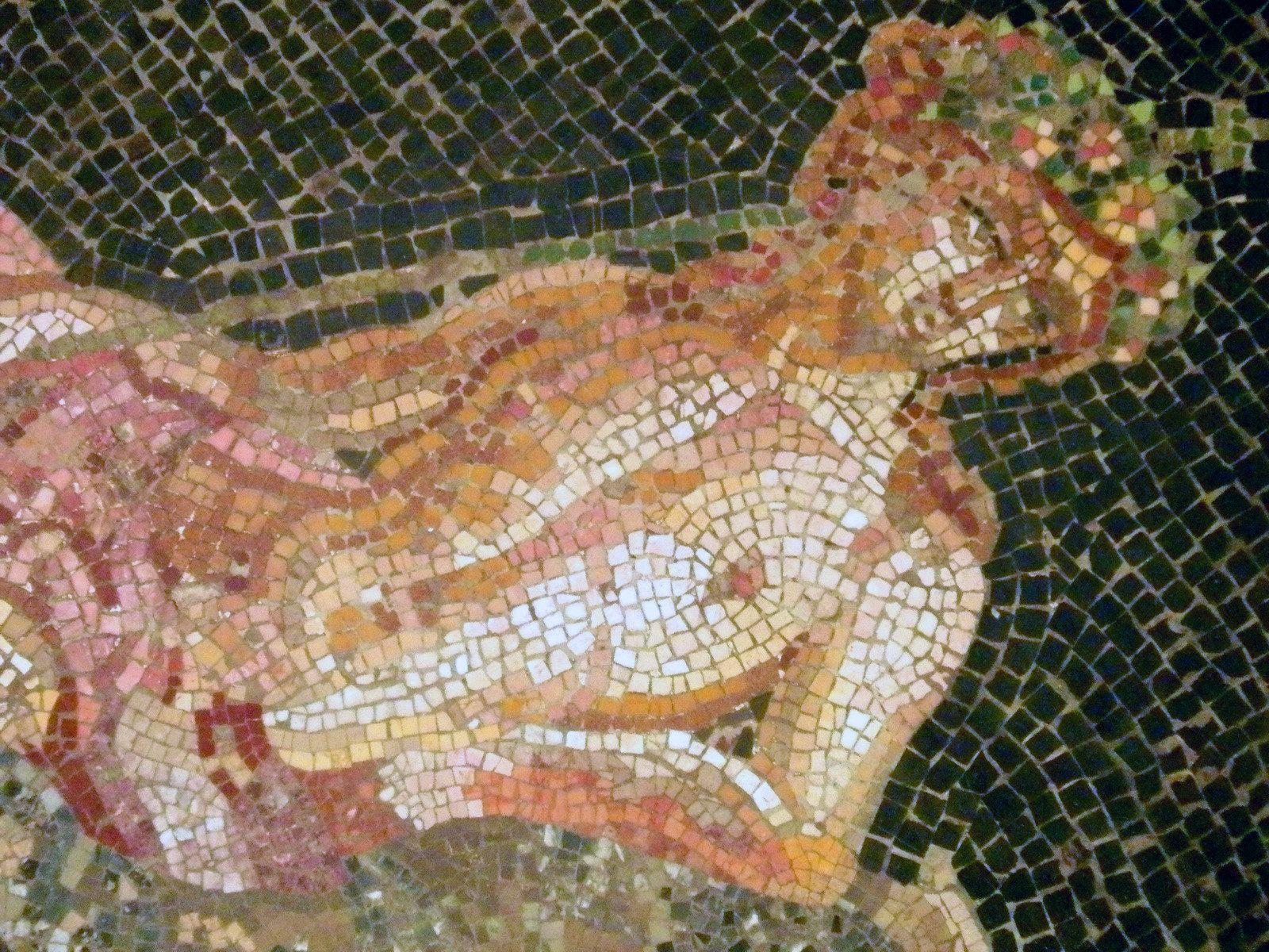 Bacchus sur une panthère en Inde